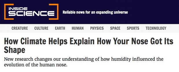 How Climate Helps Explain How Your Nose Got Its Shape.jpg